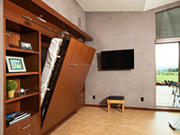 Murphy Bed and Work out room